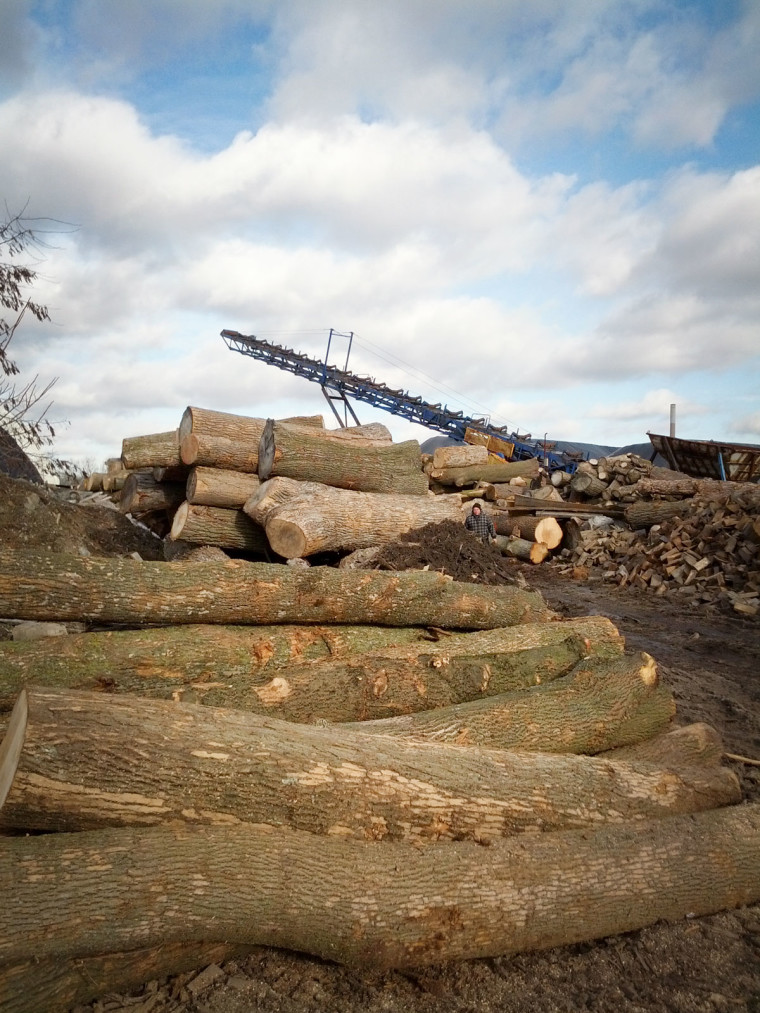Toronto Lumber Yard Reclaimed Wood