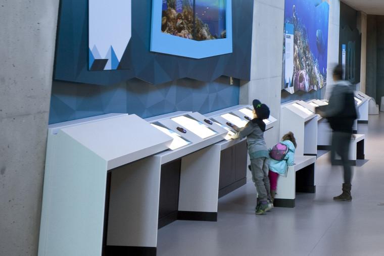 Philip-J-Currie-Museum3